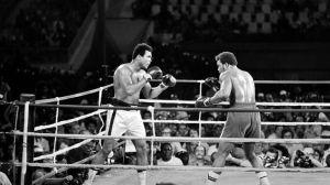 La-pelea-del-siglo